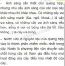 Bài 1 trang 76 SGK Sinh 6
