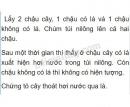 Bài 1 trang 82 SGK Sinh học 6