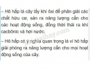 Bài 2 trang 79 SGK Sinh học 6
