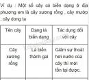Bài 3 trang 85 SGK Sinh học 6