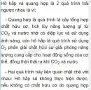 Bài 5 trang 79 SGK Sinh học 6