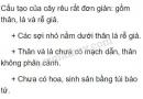 Bài 1 trang 127 SGK Sinh 6