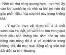 Bài 1 trang 148 SGK Sinh 6