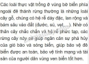 Bài 1 trang 151 SGK Sinh 6