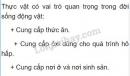 Bài 1 trang 154 SGK Sinh 6