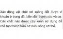Bài 1 trang 164 SGK Sinh học 6