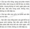 Bài 1 trang 167 SGK Sinh 6