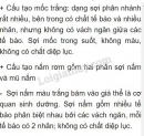 Bài 1 trang 167 SGK Sinh học 6
