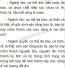 Bài 2 trang 141 SGK Sinh học 6
