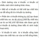 Bài 2 trang 161 SGK Sinh học 6