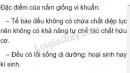 Bài 2 trang 167 SGK Sinh học 6