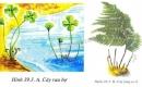 Hãy cho biết có thể nhận ra một cây thuộc Dương xỉ nhờ đặc điểm nào của lá - trang 129