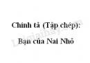 Chính tả (Tập chép): Bạn của Nai Nhỏ trang 24, 25 SGK Tiếng Việt 2 tập 1