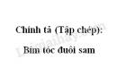 Chính tả (Tập chép): Bím tóc đuôi sam trang 33 SGK Tiếng Việt 2 tập 1