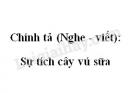 Chính tả (Nghe - viết): Sự tích cây vú sữa trang 97 SGK Tiếng Việt 2 tập 1
