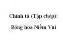 Chính tả (Tập chép): Bông hoa Niềm Vui trang 106 SGK Tiếng Việt 2 tập 1