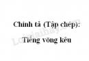 Chính tả (Tập chép): Tiếng võng kêu trang 118 SGK Tiếng Việt 2 tập 1
