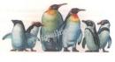 Lý thuyết thế giới động vật đa dạng và phong phú