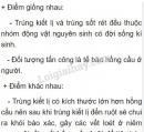 Bài 1 trang 25 SGK Sinh học 7