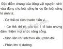 Bài 1 trang 28 SGK Sinh học 7