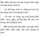 Bài 1 trang 43 SGK Sinh học 7
