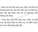 Bài 2 trang 35 SGK Sinh học 7