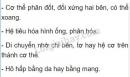 Bài 2 trang 61 SGK Sinh học 7