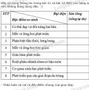 Hãy sử dụng thông tin trong bài 11 và bài 12 điền vào bảng sau (nếu đúng dùng dấu +, nếu không đúng dùng dấu  -)