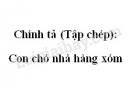 Chính tả (Tập chép): Con chó nhà hàng xóm trang 131 SGK Tiếng Việt 2 tập 1