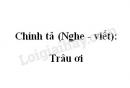 Chính tả (Nghe - viết): Trâu ơi trang 136 SGK Tiếng Việt 2 tập 1