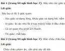 Bài 1, bài 2, bài 3 trang 94 SGK Sinh học 7