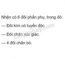 Bài 2 trang 85 SGK Sinh học 7