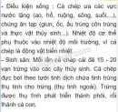 Bài 1 trang 104 SGK Sinh học 7