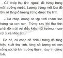 Bài 3 trang 104 SGK Sinh học 7