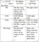 Bài 1 trang 146 sgk sinh học 7