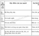Bài 1 trang 151 SGK Sinh học 7