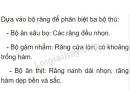 Bài 1 trang 165 sgk sinh học 7