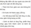 Bài 2 trang 137 SGK Sinh học 7