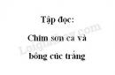 Soạn bài Tập đọc: Chim sơn ca và bông cúc trắng trang 23 SGK Tiếng Việt 2 tập 2