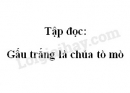 Soạn bài Tập đọc: Gấu trắng là chúa tò mò trang 53 SGK Tiếng Việt 2 tập 2