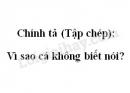 Chính tả (Tập chép): Vì sao cá không biết nói? trang 71 SGK Tiếng Việt 2 tập 2
