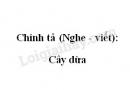 Chính tả (Nghe - viết): Cây dừa trang 89 SGK Tiếng Việt 2 tập 2