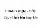 Chính tả (Nghe - viết): Cây và hoa bên lăng Bác trang 114 SGK Tiếng Việt 2 tập 2