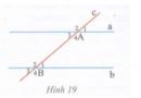 Bài tập 19 trang  117 Tài liệu dạy – học Toán 7 tập 1