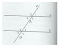Bài tập 20 trang  117 Tài liệu dạy – học Toán 7 tập 1