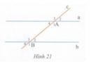 Bài tập 9 trang  118 Tài liệu dạy – học Toán 7 tập 1