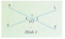 Hoạt động 1 trang  108 Tài liệu dạy – học Toán 7 tập 1