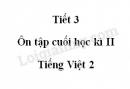 Tiết 3 - Ôn tập cuối học kì II  trang 142 SGK Tiếng Việt 2 tập 2