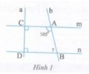 Bài tập 1 trang  133 Tài liệu dạy – học Toán 7 tập 1