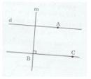 Bài tập 2 trang  133 Tài liệu dạy – học Toán 7 tập 1